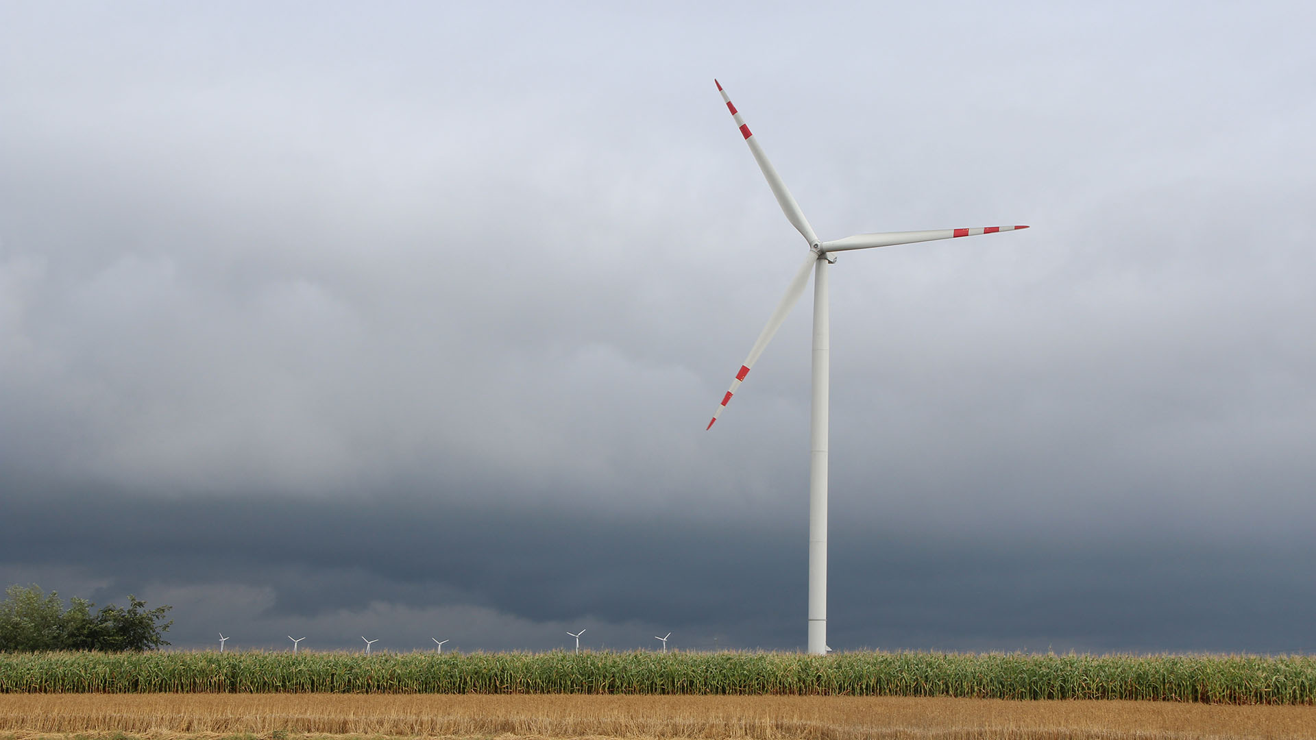 Ciechocinek Wind Farm